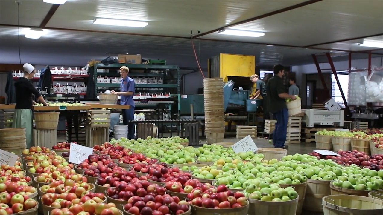 Hillcrest Orchard apples